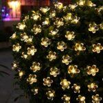 Flower LED 3